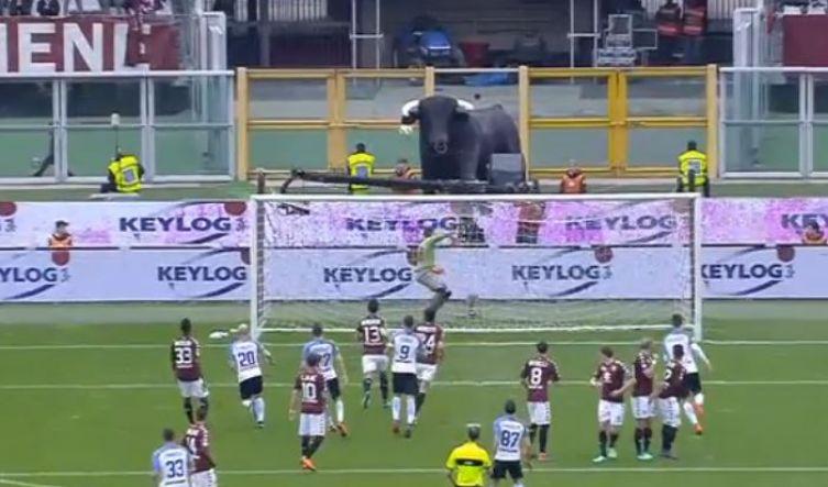 Torino Inter steward
