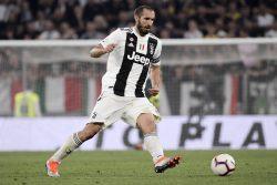"""Juventus, Chiellini: """"Torino cresciuto tanto, può puntare al"""
