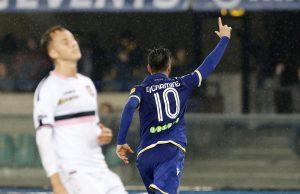 Hellas Verona-Palermo 1-1