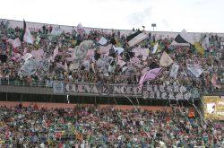 Palermo    decade l'accusa di falso in bilancio    squadra riammessa in Serie B?