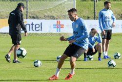 Infortunio Vecino, tegola Uruguay: si ferma il calciatore de