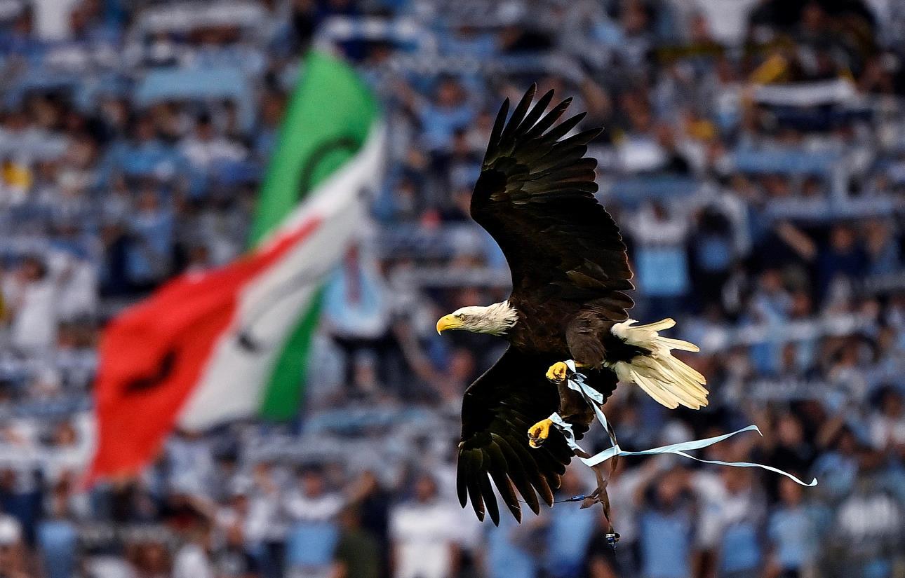 La Lazio sospende il falconiere per il saluto fascista